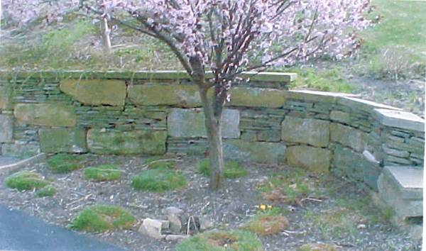 Landscaping Photo Gallery Sitework Developing Inc